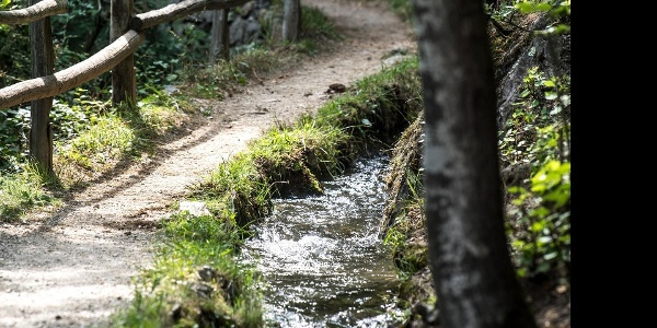 "Sentiero per ""Terrainkur"" n. 6 - Parcines – Vertigen – roggia di Parcines – Cascata di Parcines"