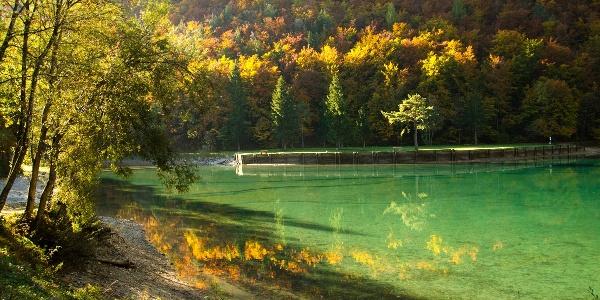 Jesen v dolini Završnice