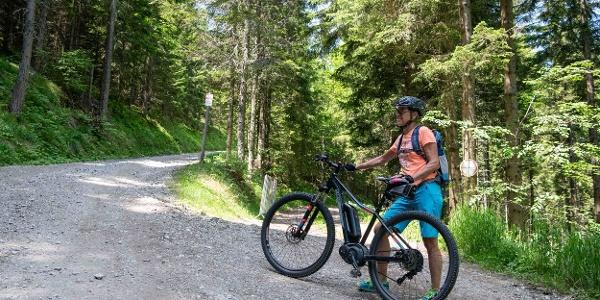 Mountainbikerin auf den Weg zum Brucker Hochanger