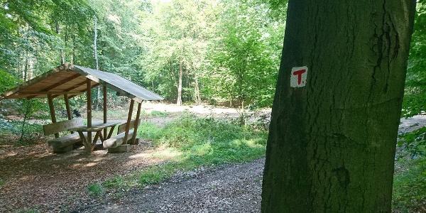 TERRA.track Kettelsberg: Rastplatz am Hauptweg