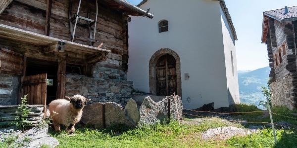 La chapelle de Notre Dame de Miséricorde, également appelée chapelle de Marie, située dans le hameau de Burgen près de Törbel dans la région de Moosalp