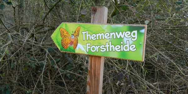 Hinweistafel Themenweg Forstheide