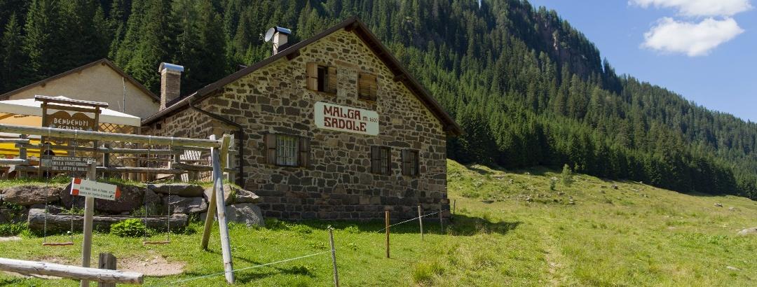 Malga (Dairy) Sadole