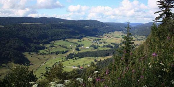 Vallée de la Valserine