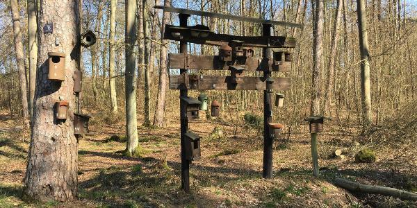 Nistkasten-Hotel im Wald bei Eichen
