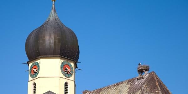Storchenhorst auf dem Dach der St. Nikolaus Kirche