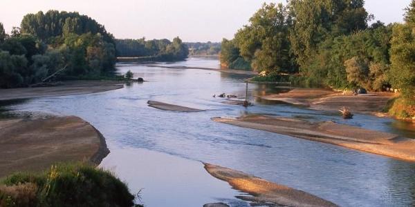 Rivière Allier à Le Veurdre