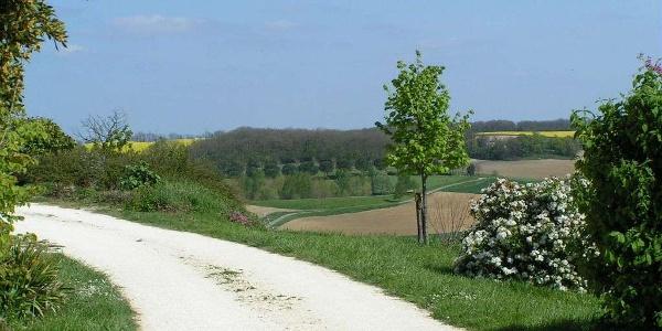 Blaziert - La vallée de l'Auvignon