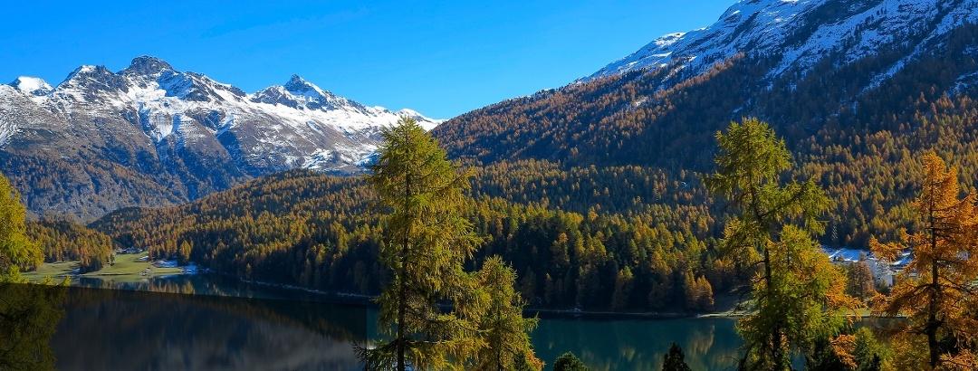 St. Moritz.