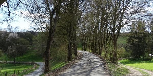 Dammstrasse Tiefenbach