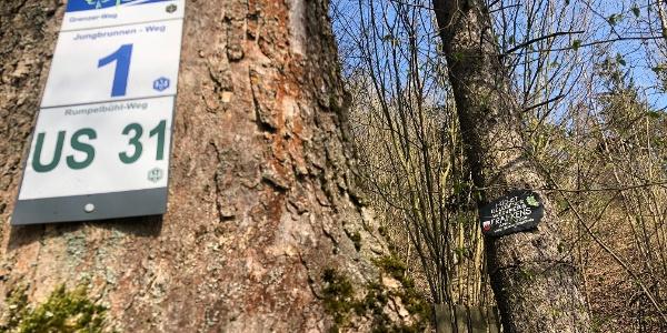Frankenwald Steigla Grenzer Weg