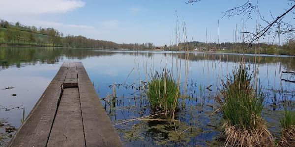 Am Ufer des Soppisee