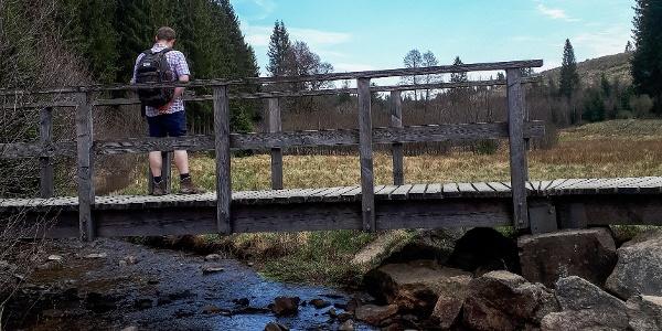 Die Brücke im Schwarzbachtal