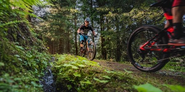Bike - Training route