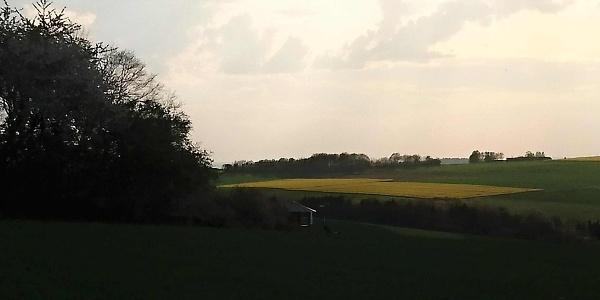 Ausblick Steinkaul