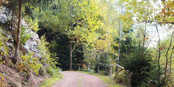 Pionierweg Thalheim zum Christelgrund