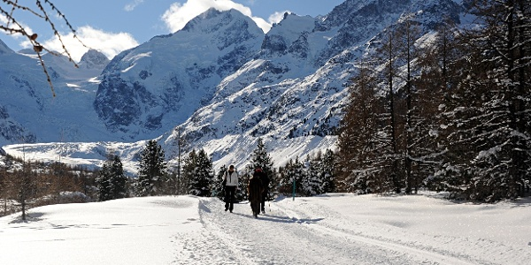 chemin d'hiver Morteratsch