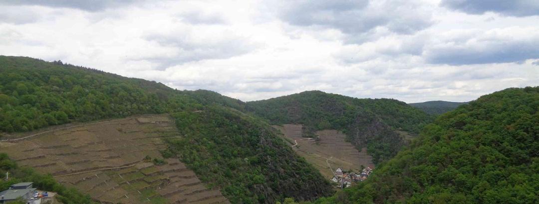 Blick von Burg Are (Mai 2020)