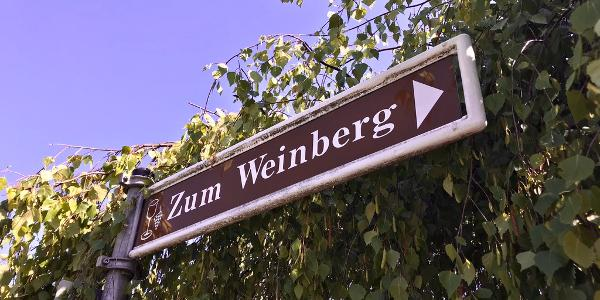 Dreh- & Angelpunkt der Route.