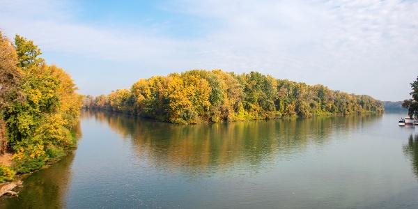 A Bodrog és a Tisza egyesülése a tokaji Erzsébet-hídnál