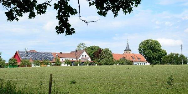 Schäfer´s Landrestaurant Michaelsberg bei Gundelsheim
