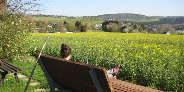 Aussicht über Lissendorf