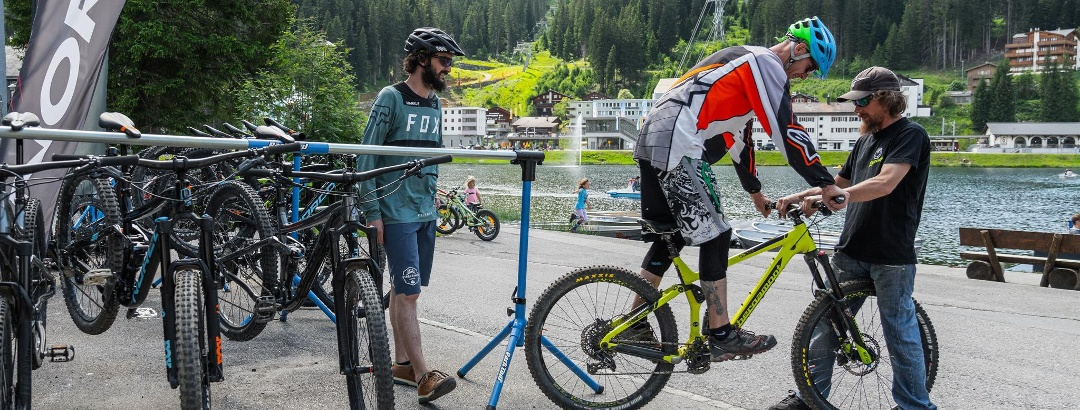 Bikeguide 29