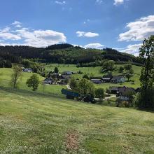 Beisinghausen