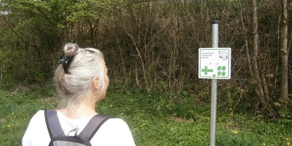 Rimstinger Gehirn-Jogging-Weg