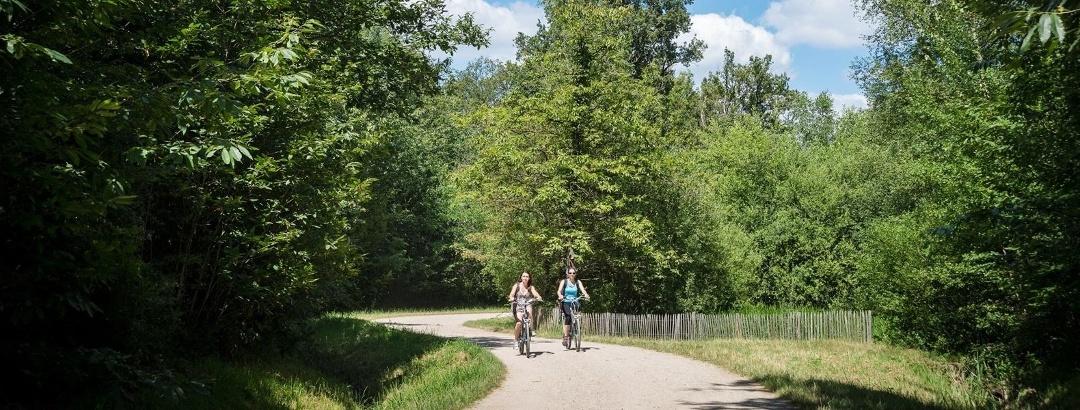 Balade à vélo en forêt de Notre Dame, Val-de-Marne