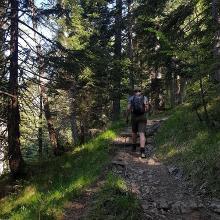 Der Anstieg: schattig über Waldpfade