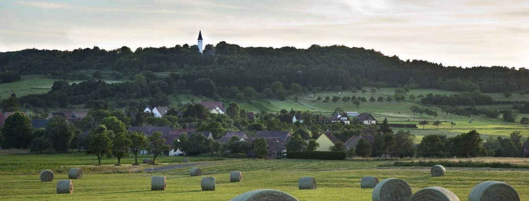 Paysage alsacien, dans le Bas-Rhin