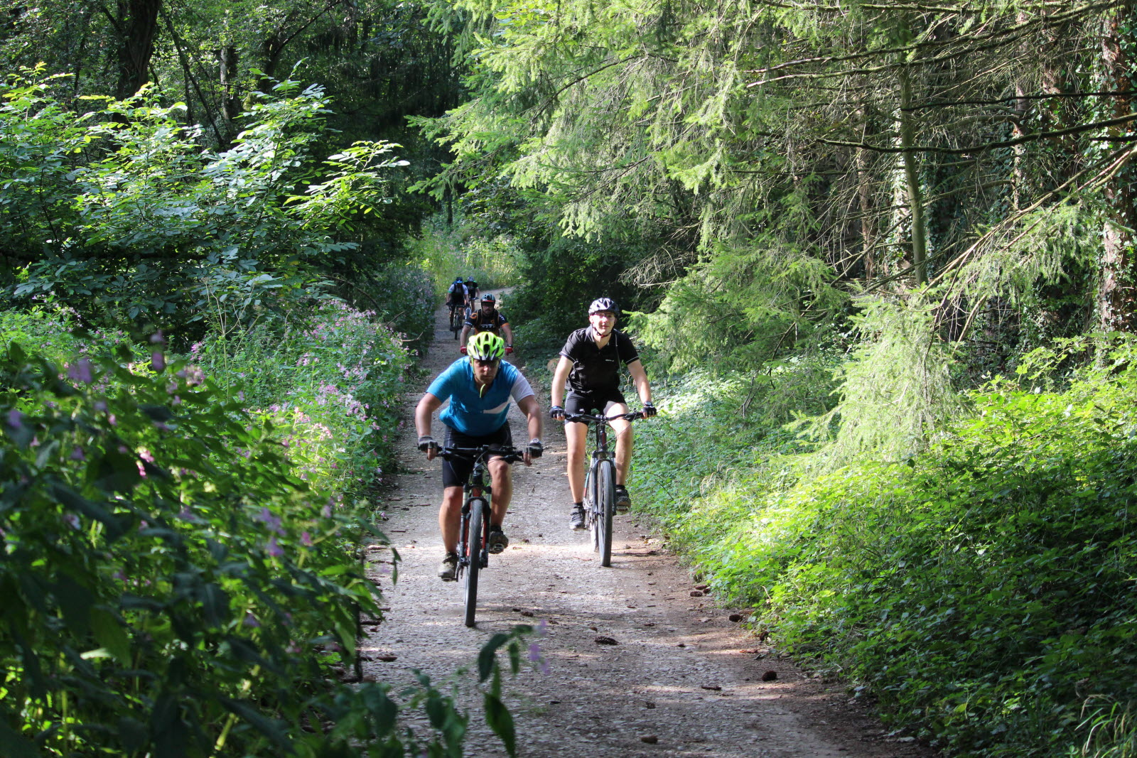 The Top MTB Rides in Haut-Rhin: find your trail