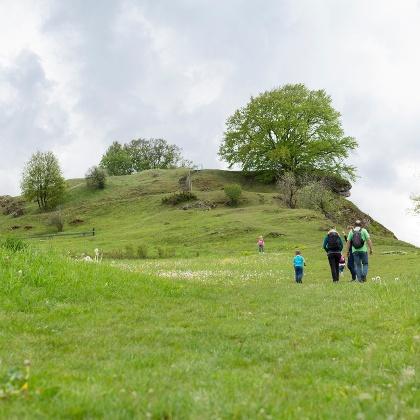 Burgstall Steinheim am Albuch