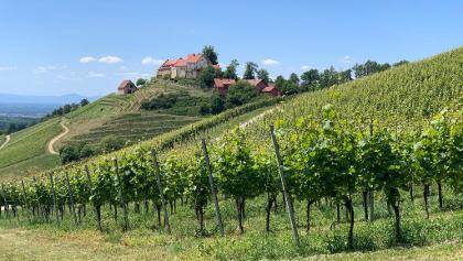 Blick auf das Schloß Staufenberg - Mai 2020