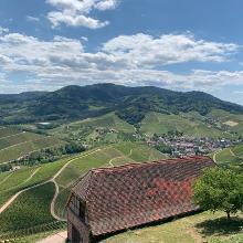 Aussicht von Schloß Staufenberg über das Durbachtal - Mai 2020