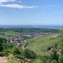 Panorama über das Durbachtal - Mai 2020