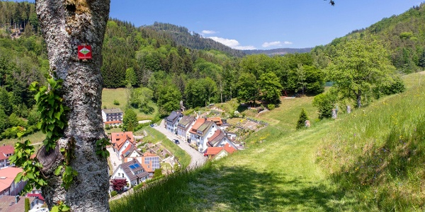 Blick auf den Ort Bad Griesbach