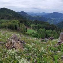 Panorama beim Aufstieg zum Vorgipfel