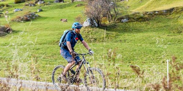 Pradas Bike