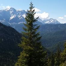 Zugspitz Panorama im Aufstieg zum Frieder