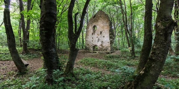 A tálodi pálos kolostor romja