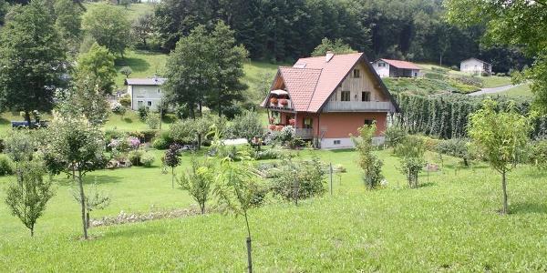 Ferienhaus_Heuser_mitten_im_Gr%c3%bcn