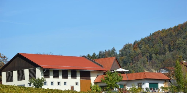 Auszeithof Weingut Pronegg Haus