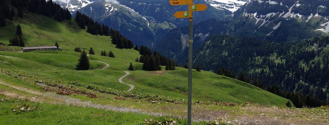 Alpage de Lapisa, versant Suisse