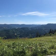 Ausblick von Himmelsliege am Holzplatz