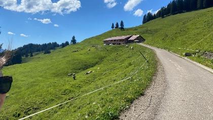 Piesen Alpe