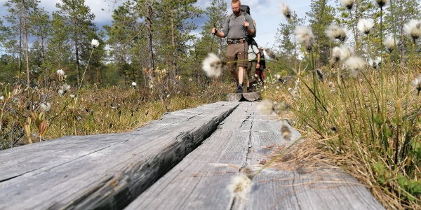 Hirvaan kierros, Salamajärven kansallispuisto