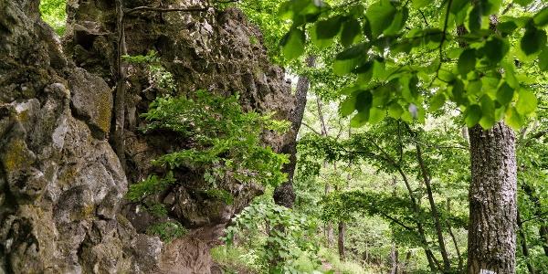 A Szamár-kő