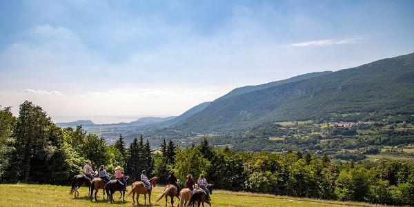 Escursione a Cavallo sul Monte Baldo, lungo la Via delle PREALPI